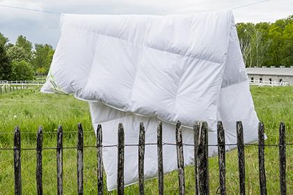 Bettdecke Winter 4-Kammer Klimaausgleich 90% Gänsedaunen 10% Gänsefedern Klasse 1